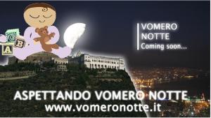 vomeronotte2014npb