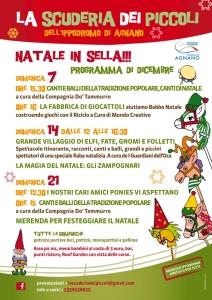SDP_volantino-dicembreML