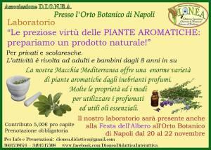 aromatiche  lab